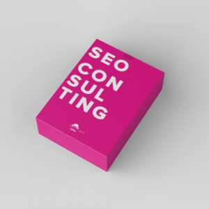 Seo Consulting 300x300